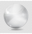 White transparent glass sphere vector image vector image