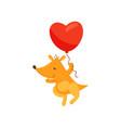 cute kangaroo holding red heart shaped balloon vector image vector image