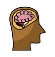 head silhouette with brain vector image vector image