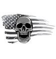 monochromatic draw skull and flag usa vector image vector image