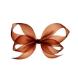 Brown Transparent Bow Top View on White Background vector image vector image