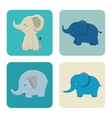 icon elephant design isolated vector image