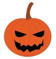 jack o lantern pumpkin decoration or color vector image