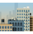 New York rooftops vector image