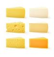 Set of Cheese Cheddar Bri Parmesan Camembert vector image