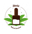 stevia natural sweetener inside spoon vector image vector image