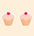 sweet muffin cakes vector image