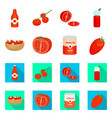 vegetable and delicious vector image vector image