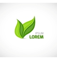 Leaves symbol vector image