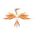 abstract flame flying phoenix line art symbol vector image