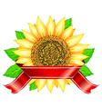 label design with sunflower leafs and red ribbon vector image vector image