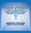 medicine symbol with message of medical service vector image vector image