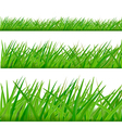 three grass borders vector image