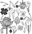 flower sketch doodle vector image vector image