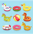 inflatable swimming ring set vector image vector image