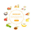 protein diet chart diagram nutrition and vector image