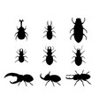 set stag beetle in silhouette style vector image vector image