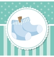 Socks of baby shower card design vector image vector image