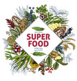 superfood rhombus banner color realistic sketch vector image vector image