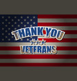 Thank you veterans vector image