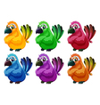 a group angry birds vector image vector image