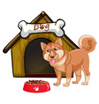 Dog and house vector image