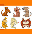 dogs cartoon characters set vector image vector image