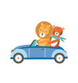 funny lion and tiger in car flat vector image