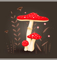 postcard with mushrooms toadstool red on a floral vector image vector image