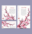 sakura blossoms cards templates vector image vector image