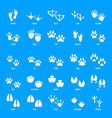animal footprint icons set simple style vector image vector image