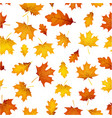 Autumn pattern with orange leaves