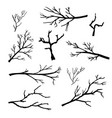 hand drawn silhouettes of tree branches vector image vector image