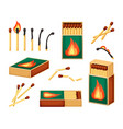 matches collection safety burn from wooden vector image vector image