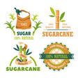 sugar cane plantation farming and agriculture vector image
