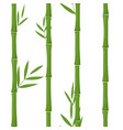 green bamboo seamless pattern background vector image