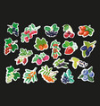 set of fruit berry stickers pins or fashion vector image vector image