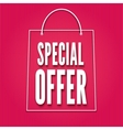 Special offer poster with bag vector image vector image