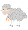 Cartoon sheep chewing orange flower vector image