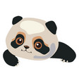 cute panda on white background vector image vector image