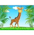 giraffe in the wild vector image vector image