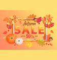gold autumn sale banner vector image vector image
