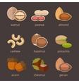 Nuts icon flat set vector image vector image