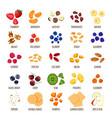 porridge ingredients healthy food vector image vector image