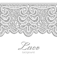 Realistic lace vector image vector image