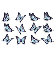 Set of blue butterflies flying in different vector image vector image