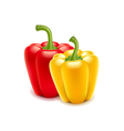 Sweet pepper isolated on white vector image vector image