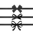 black ribbon bows silk ribbons with decorative vector image vector image