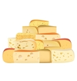 Many pieces of Various types of Cheese together vector image vector image