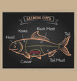 salmon cuts vector image
